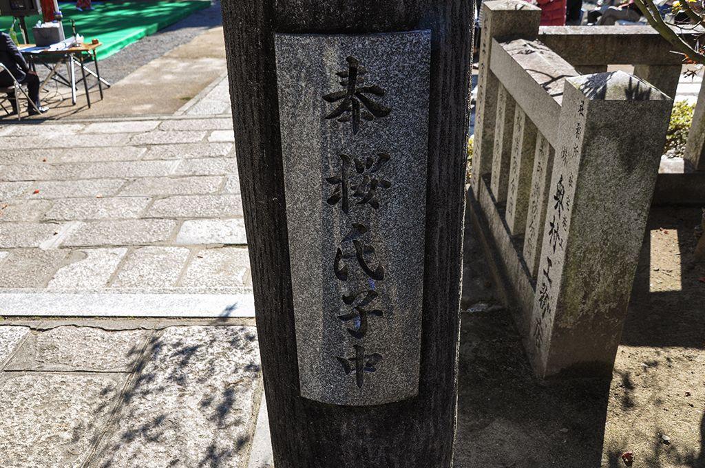 阿比太神社/桜の鳥居