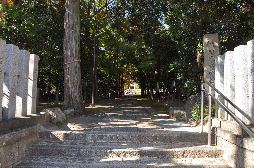 阿比太神社/桜の参道