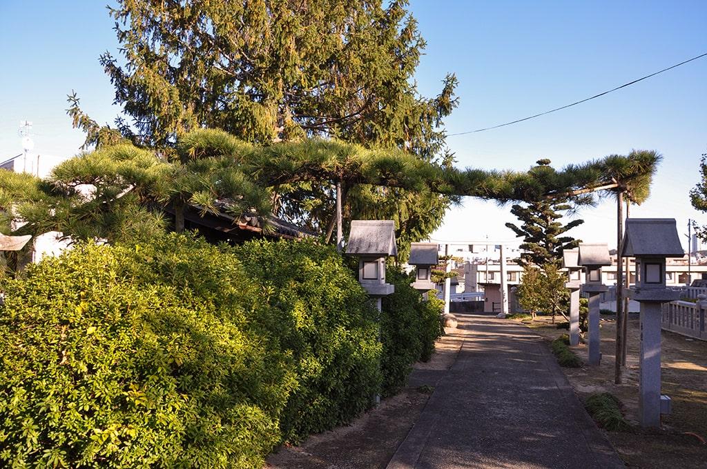 八幡太神社/八幡太松竜