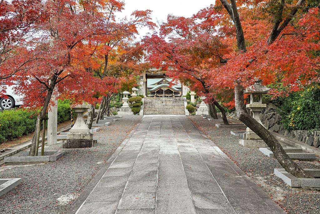 為那都比古神社/秋の参道