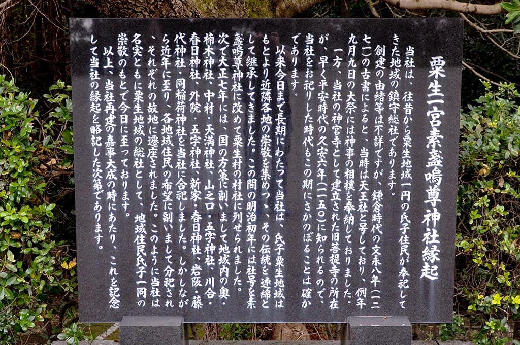 素戔嗚尊神社/由緒