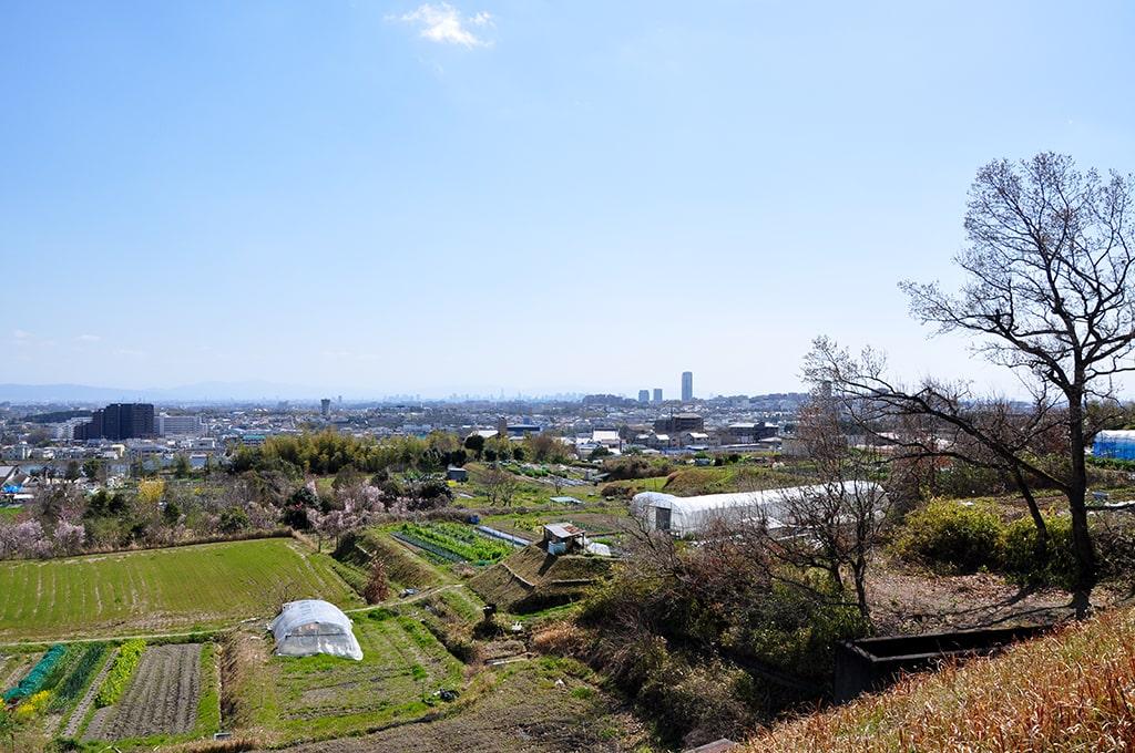 箕面市粟生外院からの眺望